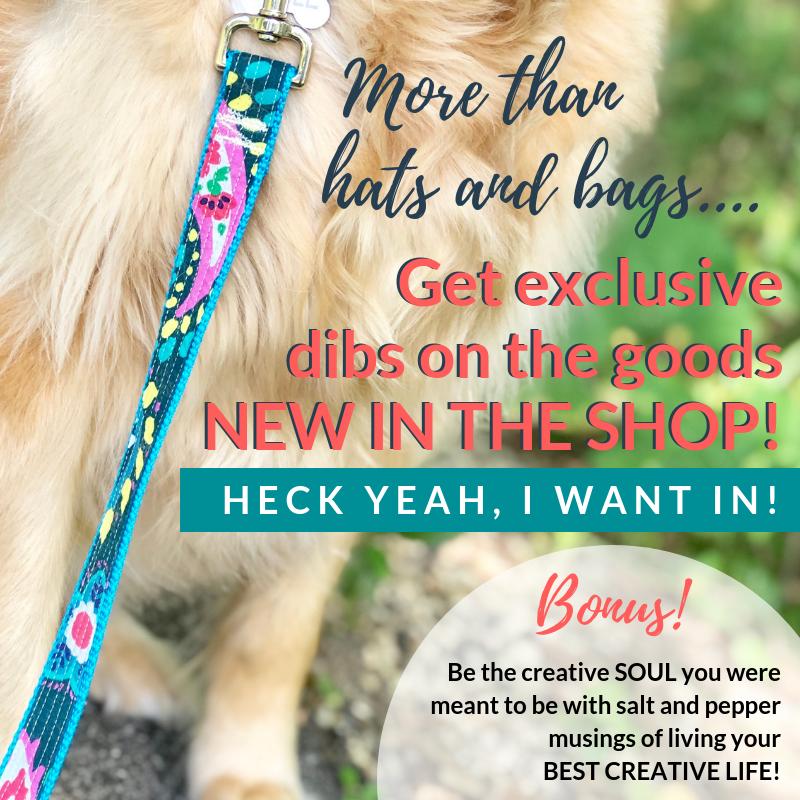custom dog leash and collars